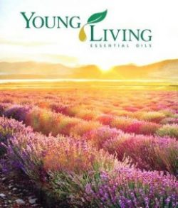 young-living-essential-oils-256x300